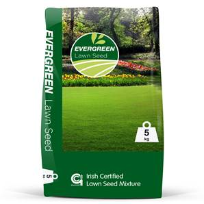 EVERGREEN LAWN SEED 5KG
