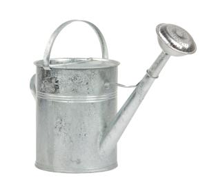 9L Watering galvanised Can