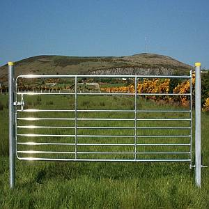 D9 GAL TUB 8' SHEEP GATE