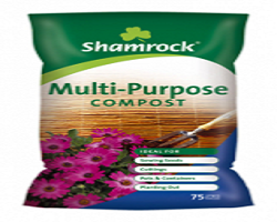 Shamrock Multi Purpose Compost 75L